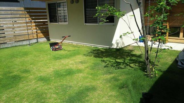 マイホーム 芝生の庭